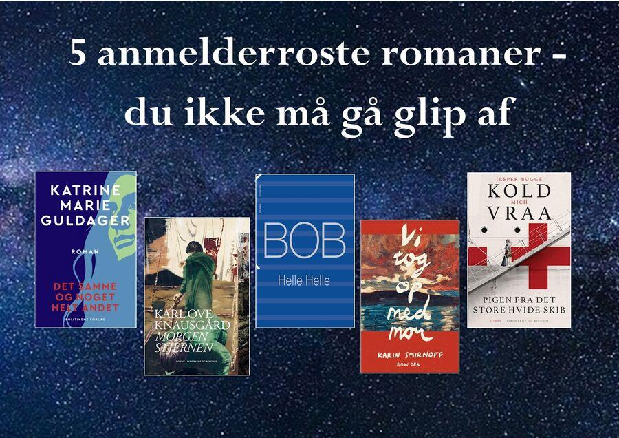 5 anmelderroste romaner